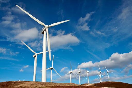 Il vento e l'energia: paleoliche in primo piano su sfondo azzurro.